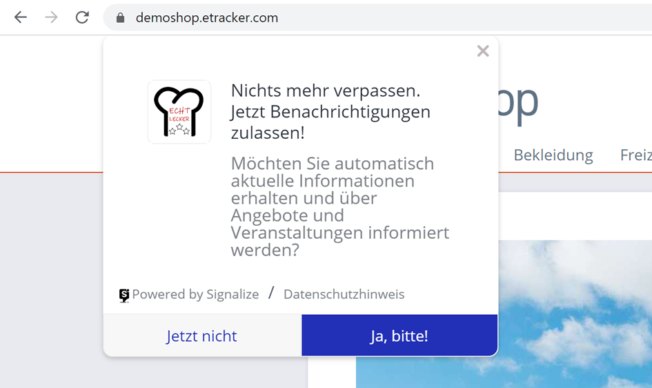 gestylter Opt-In
